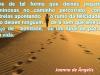 12 - Joanna de Ângelius-27-11-2016