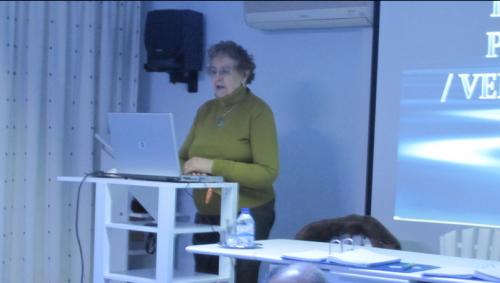 Isabel Saraiva  - Painel (2)